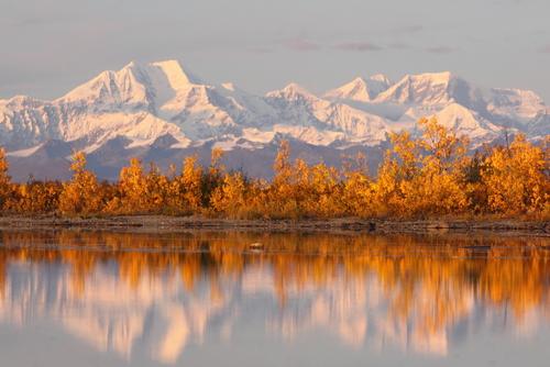 Denali National Park in Alaska bij zonsondergang