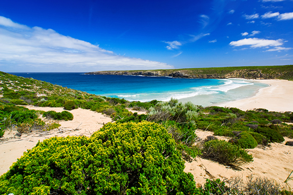 Strand in Australië